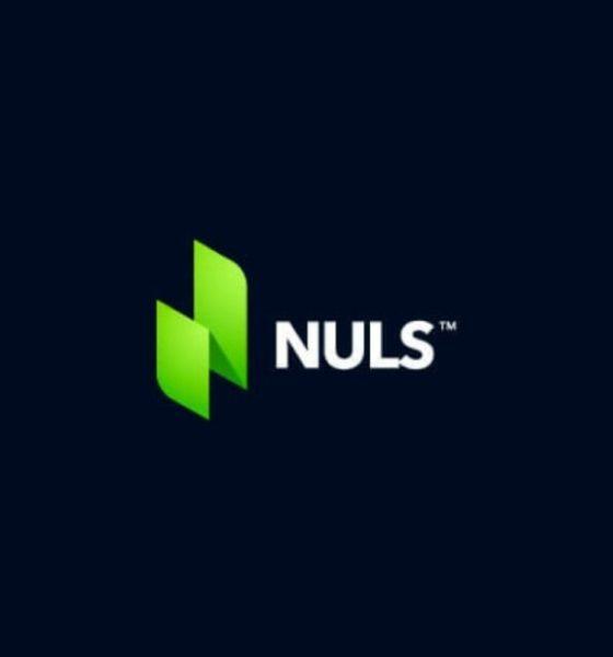 Nuls Hack