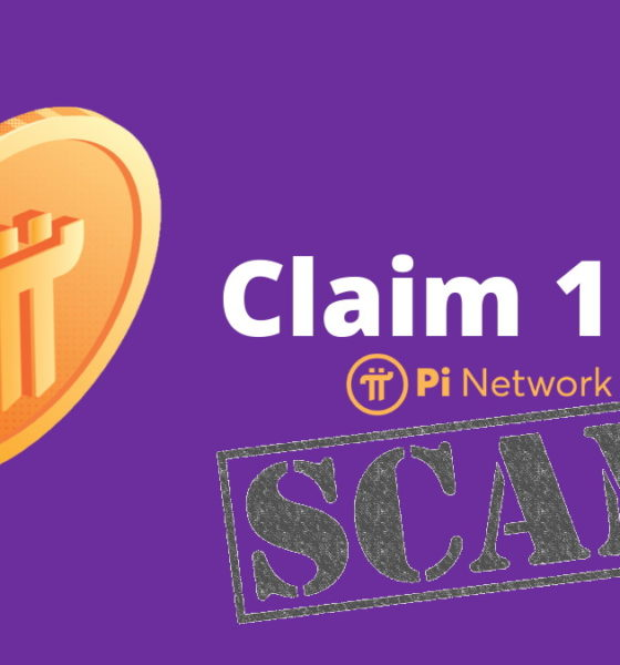 pi-network-website-is-a-scam-project
